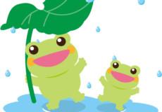 今から、梅雨の時期ですね(^^) お花や野菜達は喜びますね(^^♪