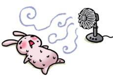 夏バテによる、食欲減退。。お悩みの方、解決策ありますよ!!!(^^)!
